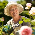 Gardening Tips for the Elderly