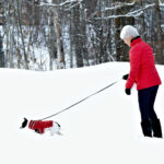 Home Care in Rahway NJ: Senior Winter Safety